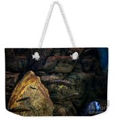 Striped Little Fishes In Aquarium Weekender Tote Bag