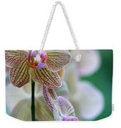 Striped Orchid 1 Weekender Tote Bag