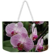 Striped Orchids With Border Weekender Tote Bag