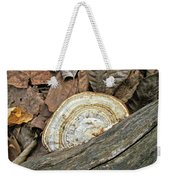 Striped Shelf Fungus - Basidiomycota Weekender Tote Bag