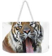 Stripes, No. 16 Weekender Tote Bag