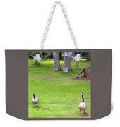 Strolling Canadian Geese Weekender Tote Bag