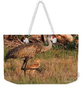 Strolling Sandhill Crane Family Weekender Tote Bag