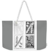 Study In Arrowheads Weekender Tote Bag