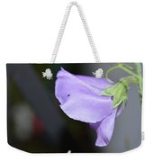 Study In Purple 2 Weekender Tote Bag