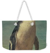 Study Of A Penguin Weekender Tote Bag by Henry Stacey Marks