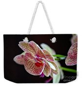 Study Of An Orchid 3 Weekender Tote Bag