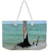 Stump Pass Tree In Color Weekender Tote Bag