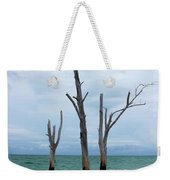 Stump Pass Triplets Weekender Tote Bag