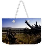 Stumped By The Lake Weekender Tote Bag
