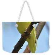 Stunning Little Yellow Budgie Parakeet In Nature Weekender Tote Bag