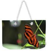 Stunning Orange And Black Oak Tiger Butterfly In Nature Weekender Tote Bag