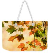 Subtle Colors Of Autumn Weekender Tote Bag