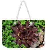 Succulent 4 Weekender Tote Bag