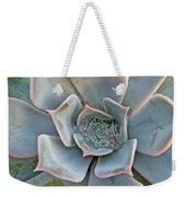 Succulent In Pastels Weekender Tote Bag