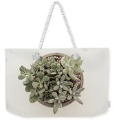 Succulent Plant From The Top Weekender Tote Bag
