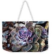 Succulent Plant Poetry Weekender Tote Bag