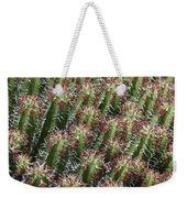 Succulent Series Vi Weekender Tote Bag