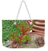 Suculent Illusion Weekender Tote Bag