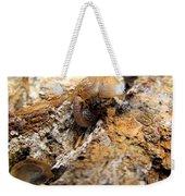Sugarloaf Snail Weekender Tote Bag
