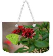 Sulphur Butterfly On Red Flower Weekender Tote Bag