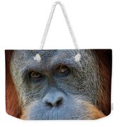 Sumatra Orangutan Portrait Weekender Tote Bag
