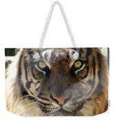 Sumatran Tiger-1440 Weekender Tote Bag