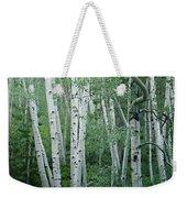 Summer Aspens  Weekender Tote Bag