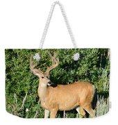 Summer Buck Weekender Tote Bag