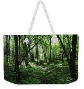 Summer Forest On A Sunny Day Weekender Tote Bag