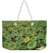 Summer Palace Lotus Pond Weekender Tote Bag