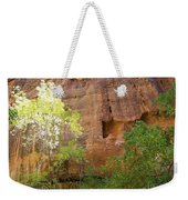 Sun Bathing In The Canyon Weekender Tote Bag