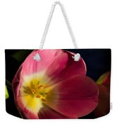 Sun Greeting Weekender Tote Bag