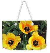 Tulips Kissed By The Sun Weekender Tote Bag
