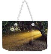 Sun Rays 2 Weekender Tote Bag