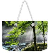 Sun Rays On Williams River  Weekender Tote Bag