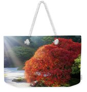 Sun Rays Over Old Japanese Maple Tree Weekender Tote Bag