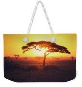 Sun Through Acacia Weekender Tote Bag