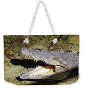 Sunbathing Croc Weekender Tote Bag