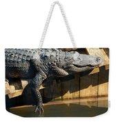 Sunbathing Gator Weekender Tote Bag