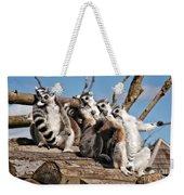 Sunbathing Ring-tailed Lemurs Weekender Tote Bag
