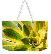 Sunburst Succulent Close-up 2 Weekender Tote Bag