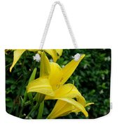 Sunfire Weekender Tote Bag