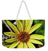 Sunflower Along Etiwanda Falls Trail In San Gabriel Mountains-california  Weekender Tote Bag