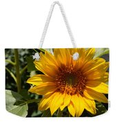 Sunflower Art- Summer Sun- Sunflowers Weekender Tote Bag