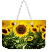 Sunflower Crops On A Farm In South Dakota Weekender Tote Bag
