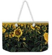 Sunflower Fields  Weekender Tote Bag