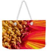 Sunflower Fire 4 Weekender Tote Bag