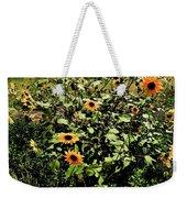 Sunflower Stalks Weekender Tote Bag