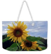 Sunflowers Close Up Weekender Tote Bag
